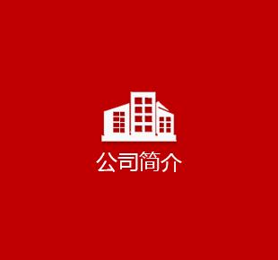 赛邦科技公司简介